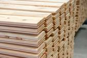 Drewno, tarcica, więźby dachowe